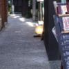 粋な大人の街、神楽坂 石畳の横丁 気の利いた名前も魅力の神楽坂散策