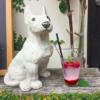 café shibaken - 野の花屋,café shibaken,まめしばコーヒー Official Website